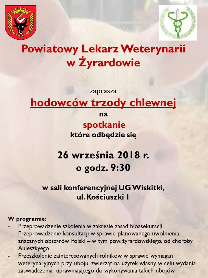 szkolenie świnki